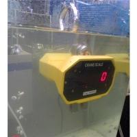 Jeřábová váha OCS-SL voděodolná, váž.do 1T,3T,5T nebo 10T